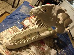 How to Make a Big Dinosaur Skull For Very Little Money - FREE Instructions - Tumblehome Learning - Science & Engineering Books For Kids & Girl Dinosaur Birthday, Dinosaur Party, Fun Crafts, Crafts For Kids, Arts And Crafts, Jurassic Park, Giant Dinosaur, Robot Dinosaur, Dinosaur Bedroom