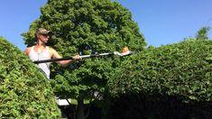 +1 (514) 835- 2558 #Tailleur de #Haies de Cedres   Beloeil, QC Canada Comment #Tonte de #Gazon Services #quebec Labelle #Pelouse. Contrat de gazon prix, contrat coupe de gazon, tarif tonte pelouse 2016, tonte de pelouse prix quebec, contrat de pelouse prix, coupe de gazon rive sud, entretien paysager montérégie, comment couper une pelouse trop haute, machine pour couper La Vallée-du-Richelieu Regional County Municipality, QC #QUEBEC (514) #BELOEIL #BOUCHERVILLE #CHAMBLY #CHATEAUGUAY…