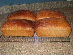 Best Whole Wheat Bread Recipe