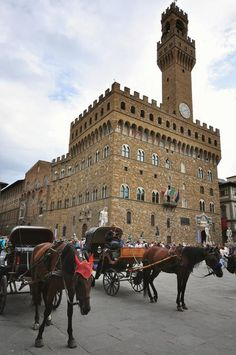 Piazza della Signoria , Florence , Italy Photo by raluca tudor — National Geographic Your Shot