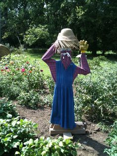 The scarecrow I put in the garden. When folks drive by they think it is me!!