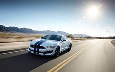 2015 Ford Shelby GT350 Mustang Car - http://www.fullhdwpp.com/transportation/cars/2015-ford-shelby-gt350-mustang-car/