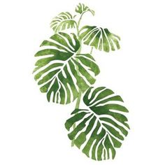 Wall Mural Stencils | Accent Stencils | Rainforest & Jungle Philodendron 1 - Stencilease.com