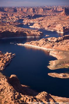 Aerial view of Lake Powell and the Glen Canyon National Recreation Area, Utah
