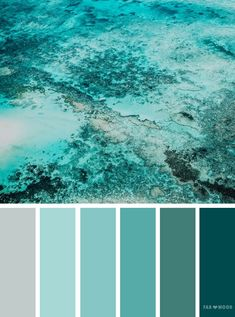 Shades of green ocean inspired color palette - find wedding color inspiration for every season ,winter hues ,summer wedding color scheme,autumn wedding Winter Wedding Colors, Winter Colors, Summer Colors, Autumn Wedding, Winter Blue, Burgundy Wedding, Wedding Summer, Trendy Wedding, Green Wedding