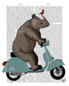 Rhino on Moped Book Print