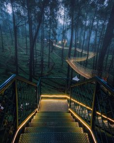 The 'Orchid Forest Cikole'. Designed by Maulana Akbar. Located in Cikole, Lembang, Indonesia. Photo by (IG). Forest Resort, Forest Park, Landscape Architecture, Landscape Design, Places To Travel, Places To See, Cool Tree Houses, Tree House Designs, Landscape Lighting
