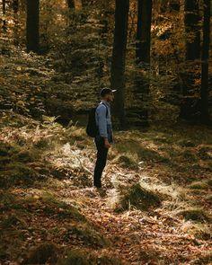 Woods | #krakow #igerskrakow #nature #fall #autumn #somewheremagazine #oystermagazine #ifyouleave #theweekoninstagram #myfeatureshoot #HSdailyfeature #streetdreamsmag #vsco #phornography #thisveryinstant #ourmomentum #eikyomag #photozine #autumn #phroommagazine #botanical #wild  #woods #my365 #inspiration #colours #travel #nikond90 #polishboy