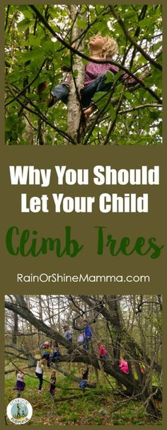 Parents - Stop Worrying and Let Your Child Climb Trees! The many benefits of tree climbing for kids. Rain or Shine Mamma Parents - Stop Worrying and Let Your Child Climb Trees! The many benefits of tree climbing for kids. Rain or Shine Mamma Forest School Activities, Nature Activities, Sensory Activities, Outdoor Activities, Learning Activities, Emotional Resilience, Emotional Strength, Kid Friendly Backyard, Kids Climbing