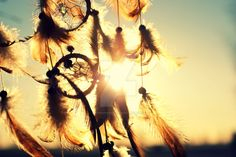 Dreams by eyesofpride on DeviantArt