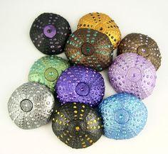 Sea Urchins   by metalartiste