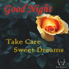 #goodnight #gn #quotes Good night Take care sweet Dreams