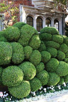 Jake Hobson's creative cloud pruning