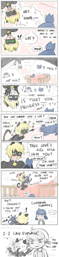 """""""chat, what are you doing to my cat?"""" """"Marichat May (Adopted Cat) """" chat noir meets marinette's new cat and discovers he's not fluent in cat-speak 鋼の錬金術師 Fullmetal Alchemist, Fulmetal Alchemist, Meraculous Ladybug, Ladybug Comics, Manga Comics, Lady Bug, Ed And Winry, Beste Comics, Alphonse Elric"""