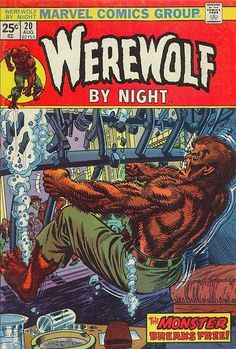 Werewolf by Night #20. One of my favorite comics this and tomb of Dracula were awesome.