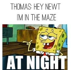 I'm just saying this because he killed Newt, but I really wish Thomas died in the maze.<<< UMMM EXCUSE ME THEN ALL OF THEM WOULD BE DEAD BECAUSE HE SAVED ALL THEIR BUTTS AND I LOVE MY TOMMY SO NO