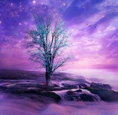 Where Dreams Flourish by `Emerald-Depths on deviantART