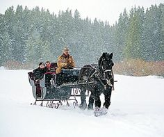 Horse Drawn Sleigh Ride. Even though I have an extensive equestrian background that included show driving, I have yet to even ride in a real classic sleigh ride!
