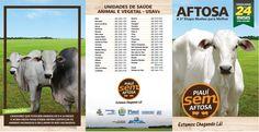 Folder - Campanha Contra a Febre Aftosa (2ª Etapa 2017) - Cliente Governo do Piauí / ADAPI Portfolio, Goats, Animals, Goat