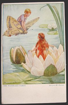 Margaret Tarrant Water Lily Fairies Postcard, Vintage Postcards ...