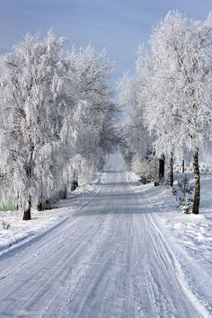 autumn scenes isawatree: Road to Home by ~Nebulosity - Beautiful snow covered road Autumn Scenes, Snow Scenes, Snow Pictures, Nature Pictures, Winter Love, Winter Snow, Beautiful Winter Scenes, Snow Photography, Photo D Art