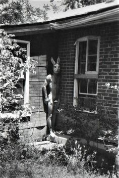 Francesca Woodman - Untitled (Boulder, Colorado), 1972-1975