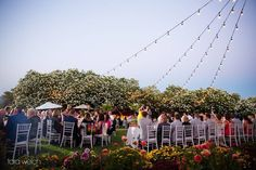 Guests dined beneath romantic lighting by @brighteventrentals at Jessica  Ryan's @barnettvineyards reception!    Venue: @barnettvineyards   Planner: @lrelyeaevents   Photographer: @tara.welch.photography   Caterer: @elainebellcatering   Florist: @evfloraldesign   Wedding Cake: @perfectendingscakes   Hair  Makeup: @belleoftheball_designs   Rentals  Lighting: @brighteventrentals