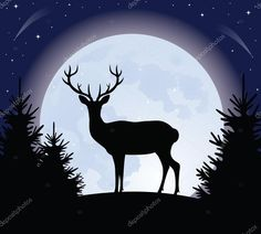 Descargar - Venado y la luna — Ilustración de stock #14079394