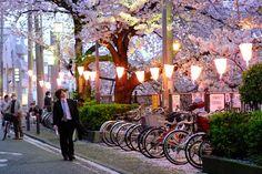(HN) Du lịch vòng quanh Nhật Bản với tour Tokyo - Núi Phú Sỹ - Hakone (05 ngày 04 đêm)