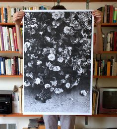 I want this large print. Framed in a simple white frame against a coloured wall?