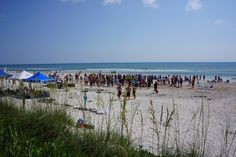 Ormond Beach Life: Ormond Beach Corporate Challenge