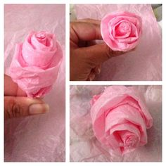 Tissue paper rose for reception hall