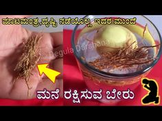 Old Coins Value, Rangoli Designs Flower, Coin Values, Telugu, Feng Shui, Beauty Tips, Breakfast, Health, Youtube