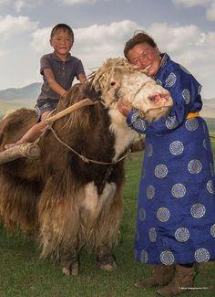 Bilderesultat for mongolian yak + photos + pinterest
