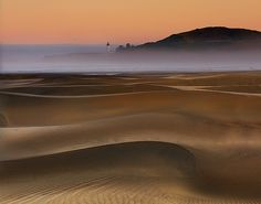 antarctics:  Agate Beach Sand Dunes-Oregon Coast by kevin mcneal on Flickr.