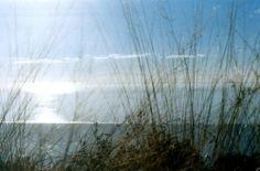 I miei sentieri con un click Dalla montagna, il mare.. Cerreta - Monte Folgorito (AlpiApuane)