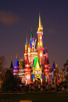 """All our dreams can come true, if we have the courage to pursue them""  - Walt Disney"
