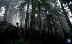 Mountain Biking Whistler, B.C.