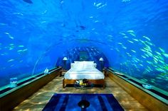 my future bedroom