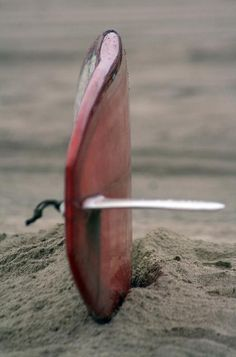 Surf Longboarding, Wakeboarding, Paddleboarding, Sup Yoga, Seaside Style, Sup Surf, Water Photography, Summer Photography, Photography Ideas
