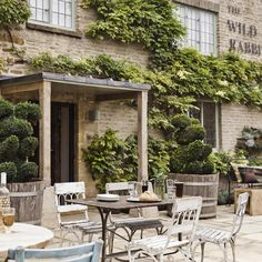 Dream Destination: The Wild Rabbit