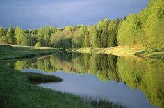 Navesti jõgi Saarisoo kohal. Soomaa rahvuspark  © Arne Ader