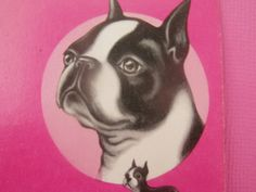 Vintage Pinochle Cards / Boston Terrier Cards / Dog Playing Cards / Dog Cards / Terrier Playing Cards / Free Shipping! by TamJewelryandUniques on Etsy