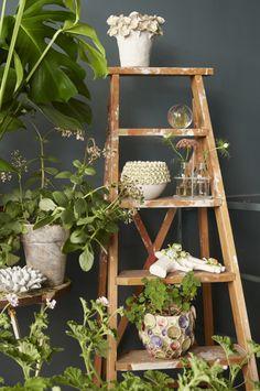 Decoratieve ladder als basis voor een sfeervolle urban jungle. Foto: Caroline Tengen