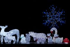christmas lights | Christmas Animal Lights Free Stock Photo - Public Domain Pictures