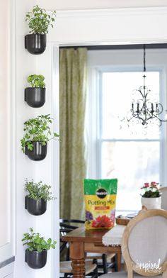 Add fresh flavor to your entertaining by creating a modern & vertical herb garden in your home using @miraclegro Potting Mix. #AndProject