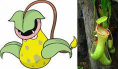 Spread the love Los Pokémons han supuesto prácticamente una forma de pensar para muchísimos niños desde que comenzaron hace ya 20 años, y es que incluso las personas adultas no pueden evitar acordarse sobremanera de todas estas pequeñas criaturas que nos hicieron tan felices en la década de los 90. Absolutamente todos sus artículos, cromos …