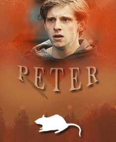 Peter Pettigrew - The Marauders gif