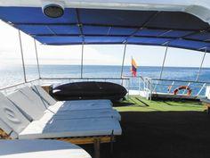 Galapagos - Ecoventura Flamingo yacht