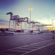 Oakland (work-)horses at rest. #cranespotting #portofoakland
